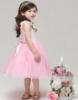 Picture of Frozen Princess Elsa Anna Costume Dress - Pink