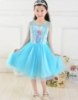 Picture of Disney Frozen Elsa - Satin Tulle Dress