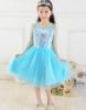 Picture of Disney Frozen Elsa - Satin Tulle Dress