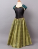 Picture of Frozen Princess Anna Dress