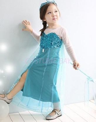 Picture of Frozen Princess Elsa Anna Costume Dress