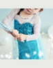 Picture of Frozen Princess Elsa Anna Costume Dress