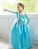 Picture of Frozen Princess Elsa Dress