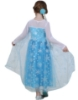 Picture of Princess Elsa Frozen Costume Dress
