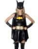 Picture of Superhero Supergirl Batgirl Batwoman Costume