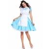Picture of Ladies Alice In Wonderland Costume