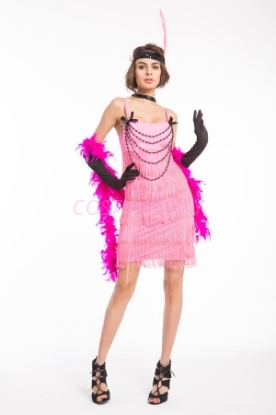 Picture of 1920's Charleston Flapper Dress Front Beads - Pink