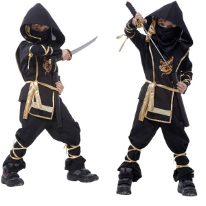 Picture for category Ninja