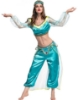 Picture of Princess Jasmine Arabian Belly Dancer Costume