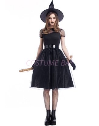 Picture of Womens Wicked Witch Costume
