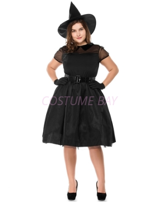 Picture of Womens Wicked Witch Costume PLUS SIZE
