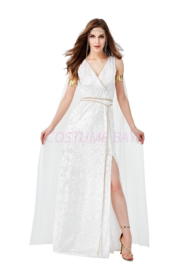 Picture of Greek Goddess costume