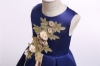 Picture of Girls Flower dress - Champagne