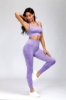 Picture of Seamless Yoga Set - Grey