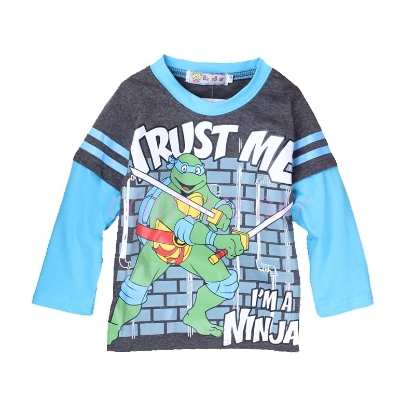 Picture of Boys Grey Ninja Turtle T-Shirt with Blue Long Sleeves