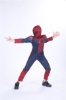 Picture of Boys Superhero Muscle Costume - Spiderman